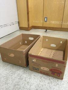「出張古本買取ならだるまとみき堂」バナナ箱最強説。