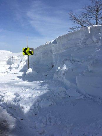 新潟県の雪景色